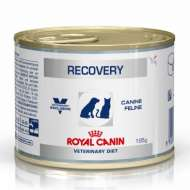 Royal Canin Recovery Dog & Cat - Conserva 195 g