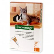 Advantage 40 Pisica - Pipeta Antiparazitara 1 Cutie - 4 Pipete