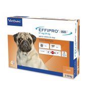 EFFIPRO DUO DOG S 67 MG (2 - 10 KG) - 4 PIPETE