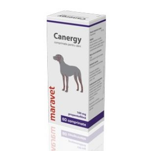 Canergy 100 mg 6 X 10 Tablete
