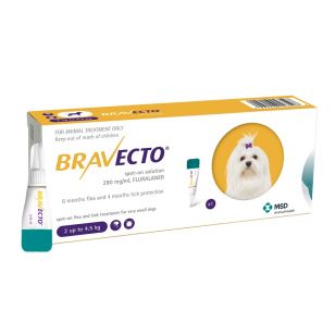 BRAVECTO CAINE SOLUTIE SPOT-ON XS 112.5MG (2-4.5 KG) - 1 PIPETA